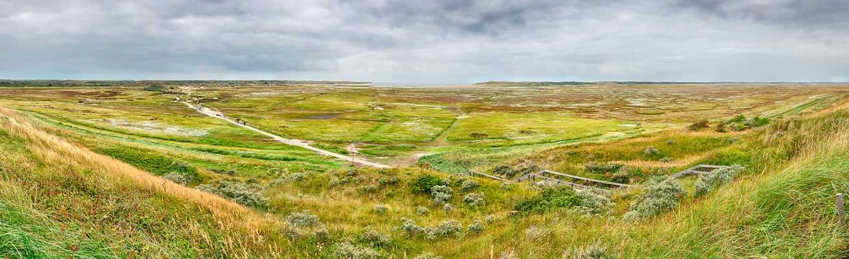 De Slufter - Texel